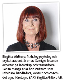 BirgittaAhltorp_VinklatMontage_206